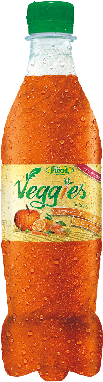 Veggies Orange-Mandarine-Physalis-Kürbis-Karotte PET 0,5l